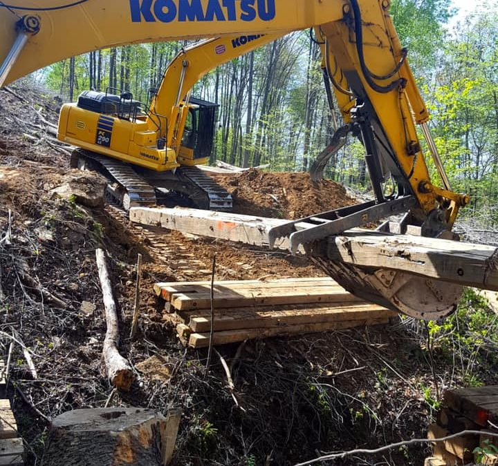Land & Job Site Clearing