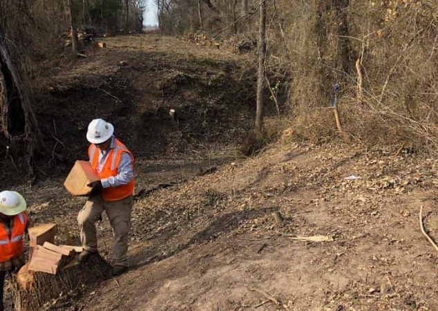 Underbrush Removal